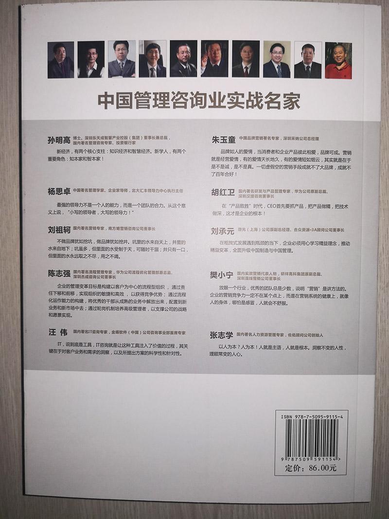 中国管理咨询业实战名家背面